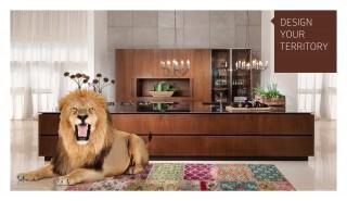 Samgal lion